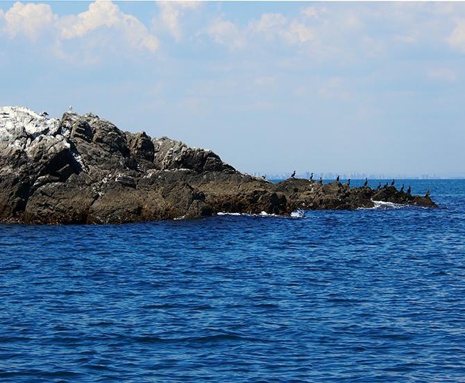 прогулка на парусной яхте остров Св. Ивана фото